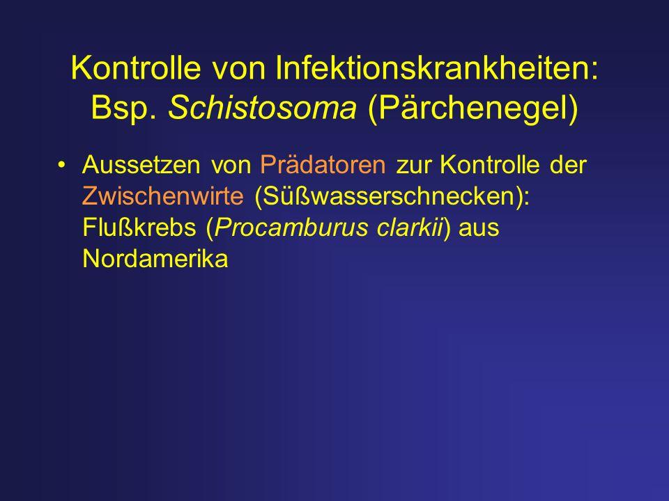 Kontrolle von Infektionskrankheiten: Bsp. Schistosoma (Pärchenegel)