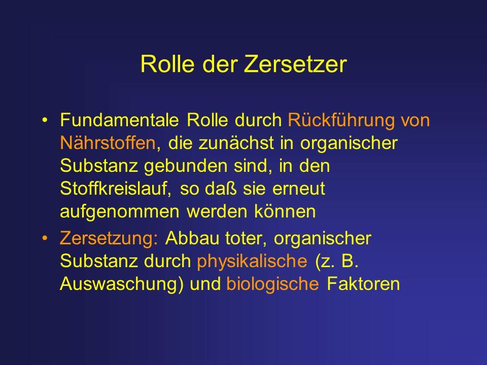 Rolle der Zersetzer