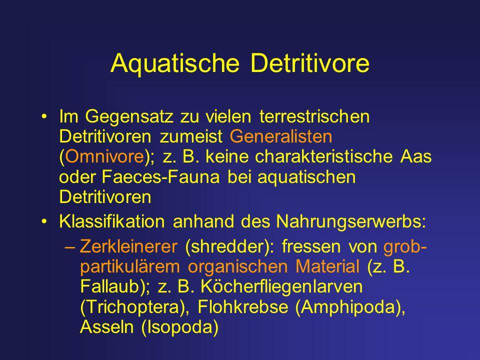 Aquatische Detritivore