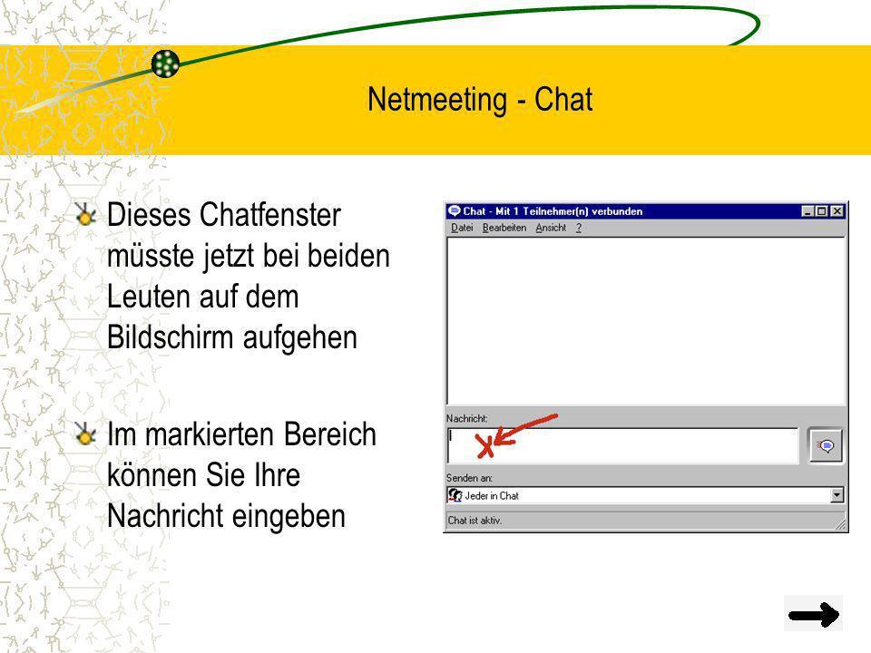 Netmeeting - Chat Dieses Chatfenster müsste jetzt bei beiden Leuten auf dem Bildschirm aufgehen.