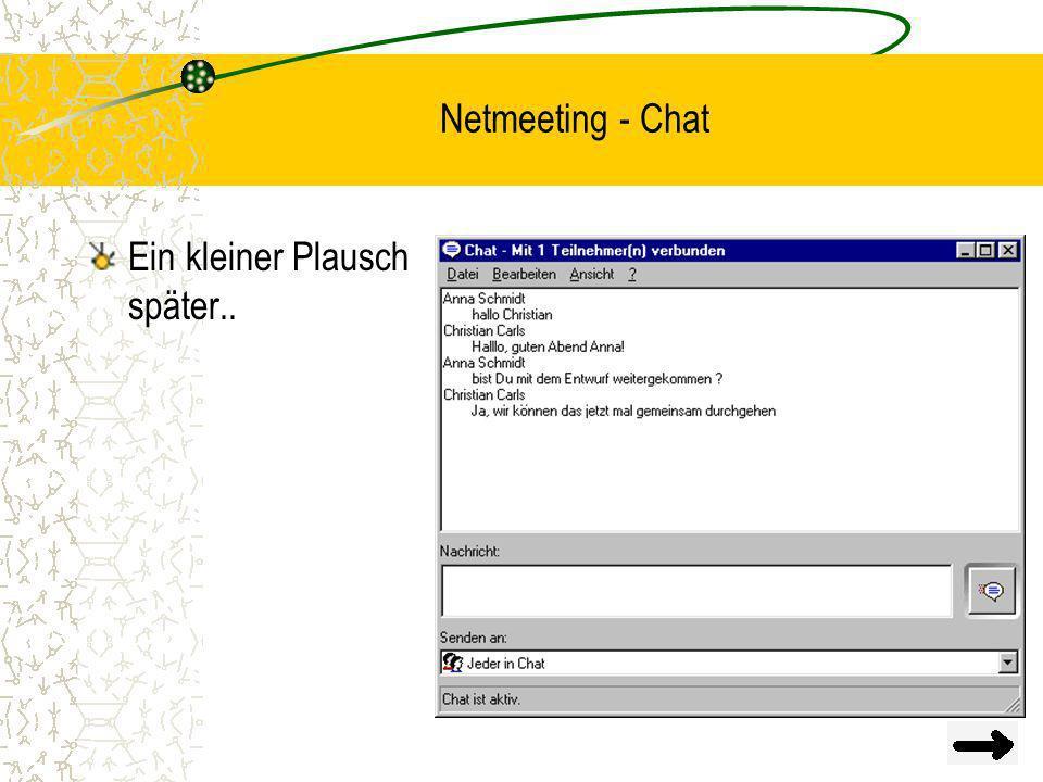 Netmeeting - Chat Ein kleiner Plausch später..