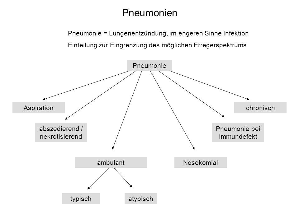Pneumonien Pneumonie = Lungenentzündung, im engeren Sinne Infektion