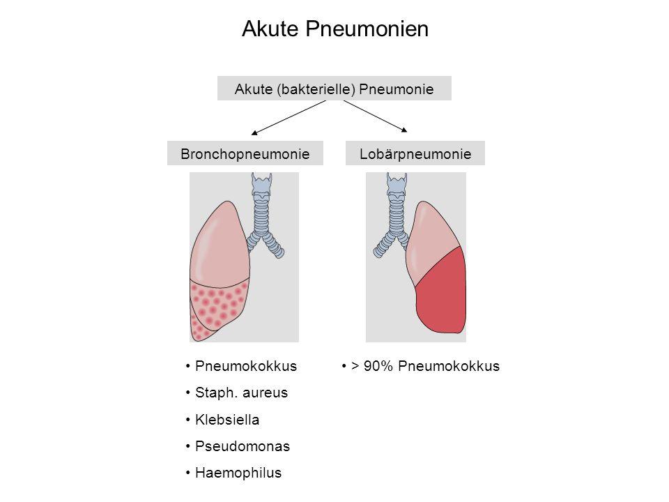 Akute (bakterielle) Pneumonie