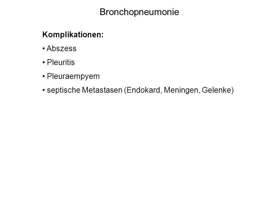 Bronchopneumonie Komplikationen: Abszess Pleuritis Pleuraempyem