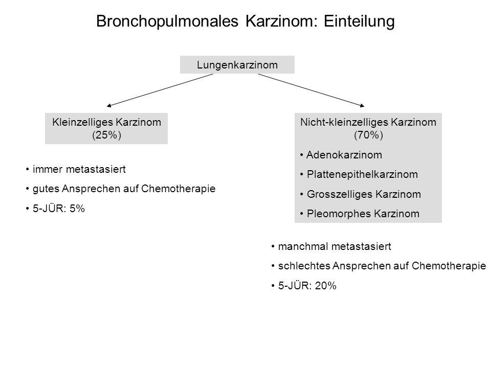 Bronchopulmonales Karzinom: Einteilung