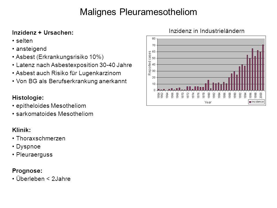 Malignes Pleuramesotheliom