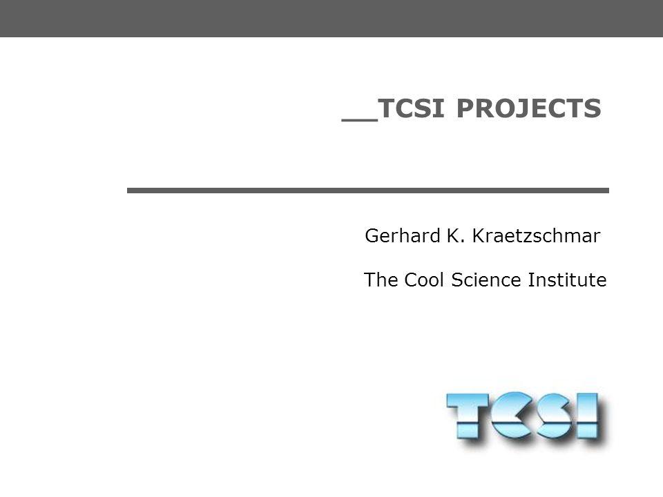 __TCSI PROJECTS