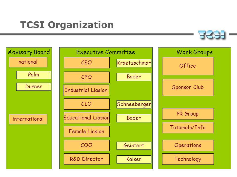 TCSI Organization Advisory Board Executive Committee Work Groups
