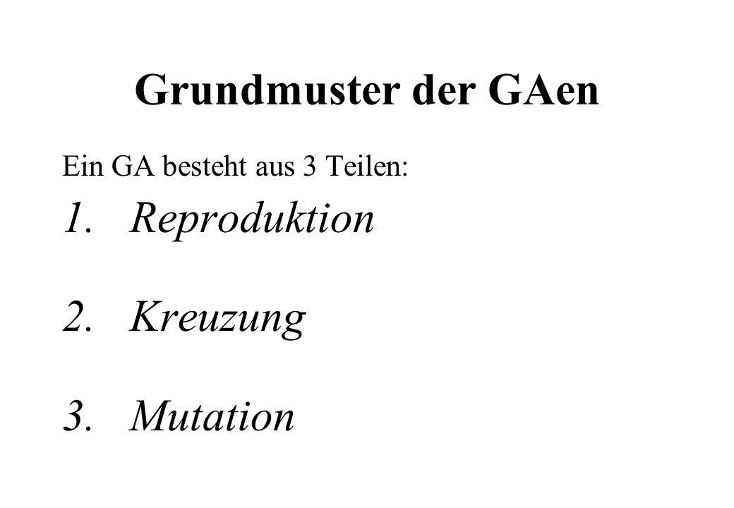 Grundmuster der GAen 1. Reproduktion 2. Kreuzung 3. Mutation