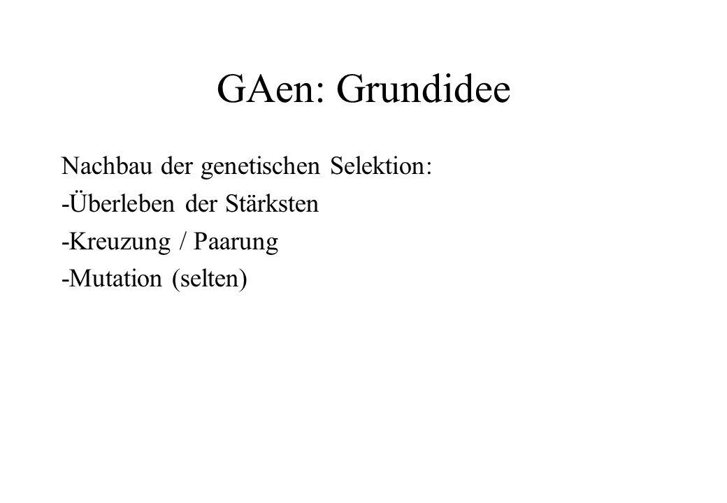 GAen: Grundidee Nachbau der genetischen Selektion: