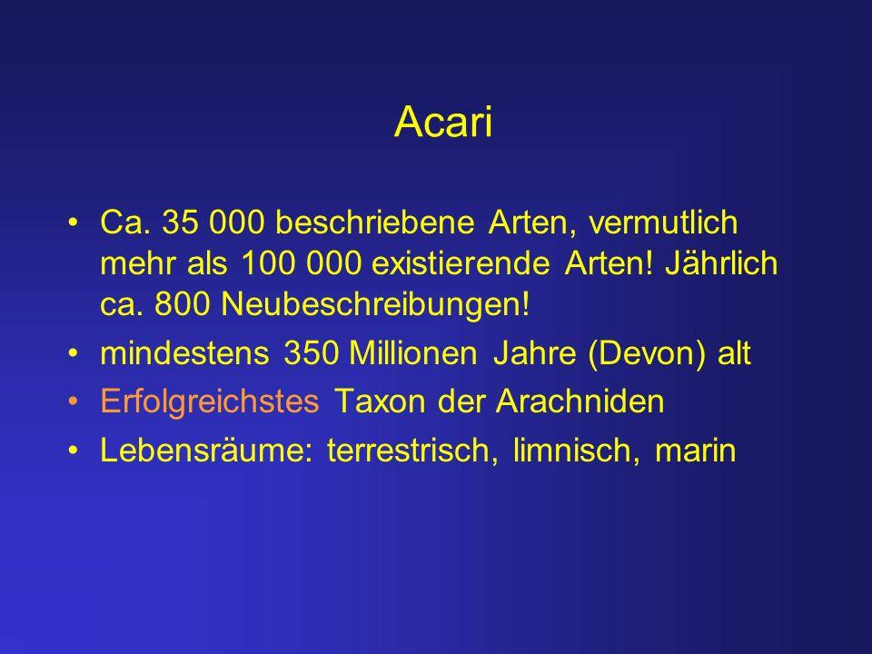 Acari Ca. 35 000 beschriebene Arten, vermutlich mehr als 100 000 existierende Arten! Jährlich ca. 800 Neubeschreibungen!