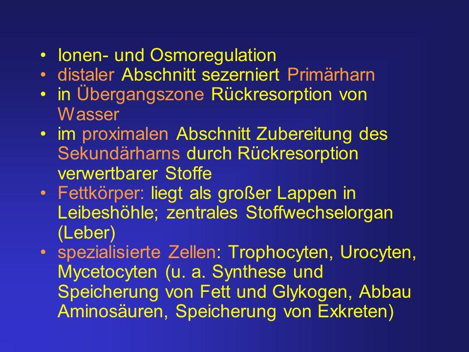 Ionen- und Osmoregulation