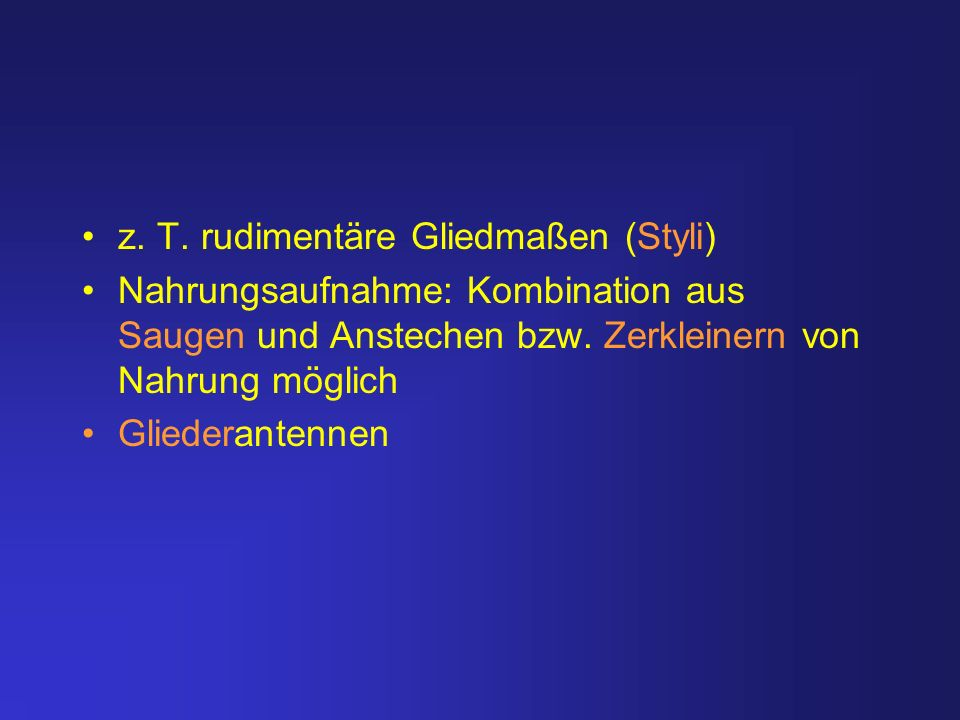 z. T. rudimentäre Gliedmaßen (Styli)