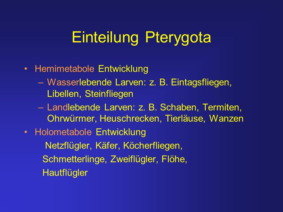 Einteilung Pterygota Hemimetabole Entwicklung
