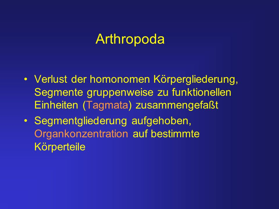 Arthropoda Verlust der homonomen Körpergliederung, Segmente gruppenweise zu funktionellen Einheiten (Tagmata) zusammengefaßt.