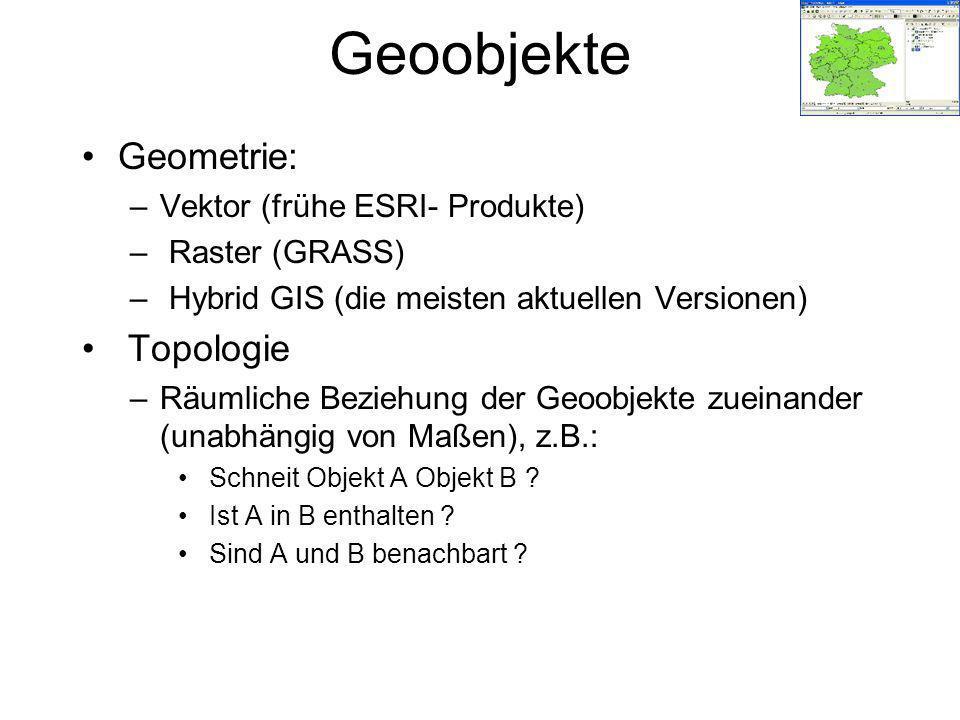 Geoobjekte Geometrie: Topologie Vektor (frühe ESRI- Produkte)