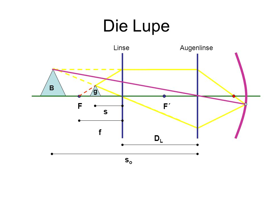 Die Lupe Linse Augenlinse B g F F´ s f DL so