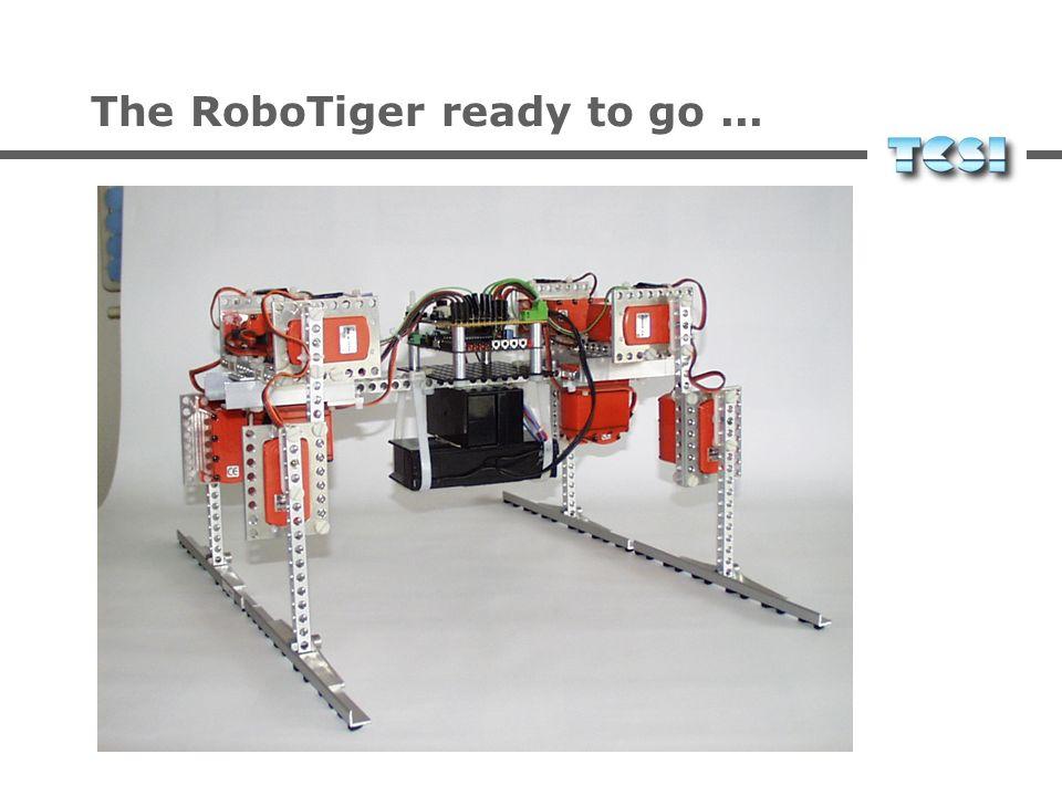 The RoboTiger ready to go ...