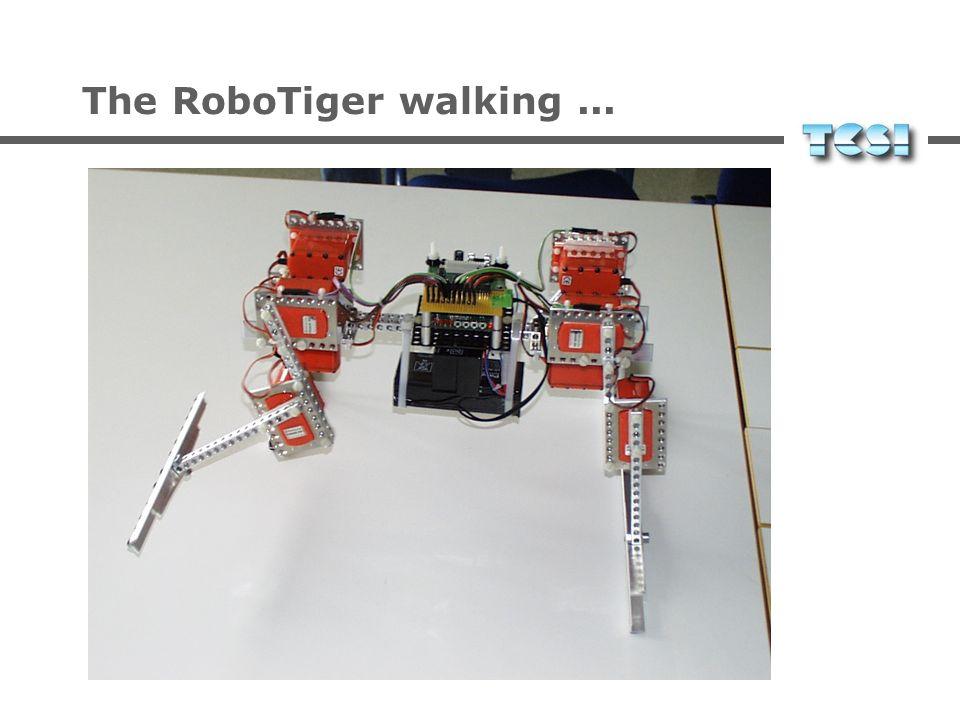 The RoboTiger walking ...