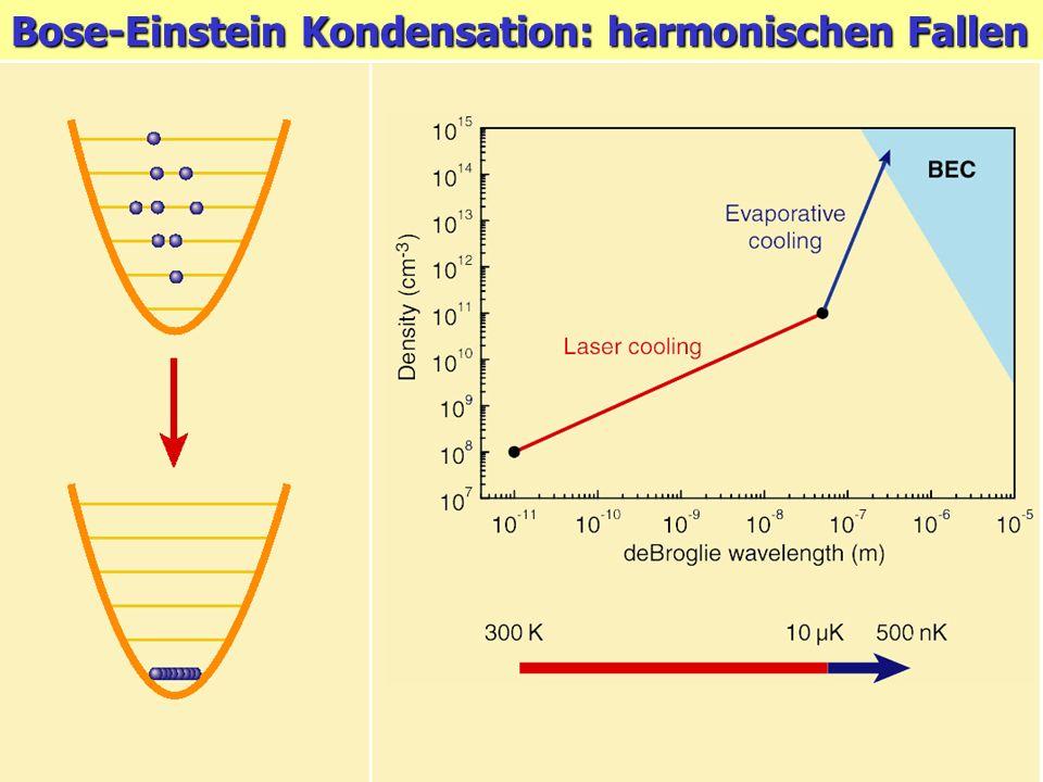 Bose-Einstein Kondensation: harmonischen Fallen