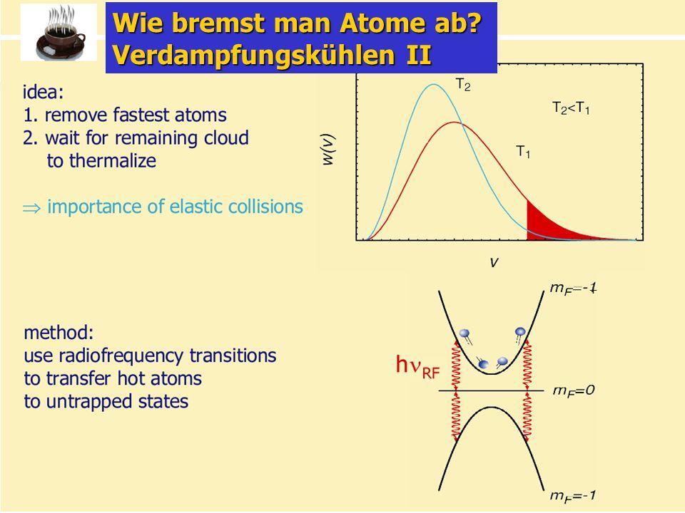 Wie bremst man Atome ab Verdampfungskühlen II