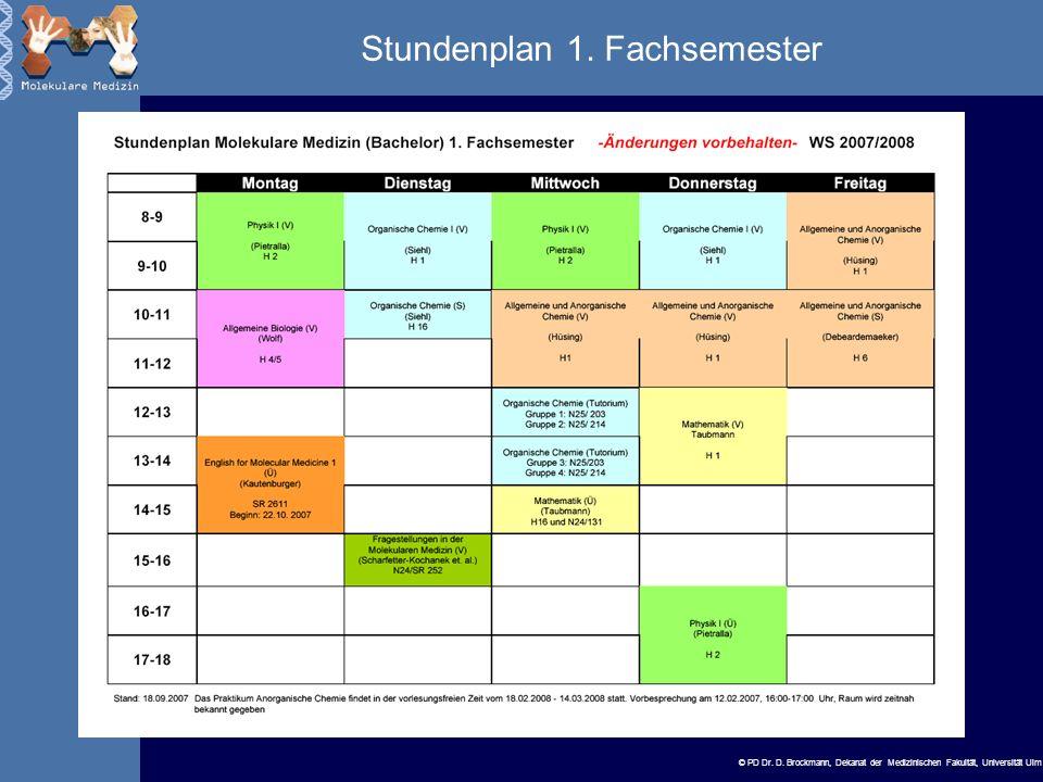 Stundenplan 1. Fachsemester