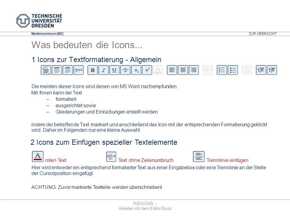 1 Icons zur Textformatierung - Allgemein
