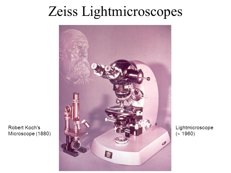 Zeiss Lightmicroscopes