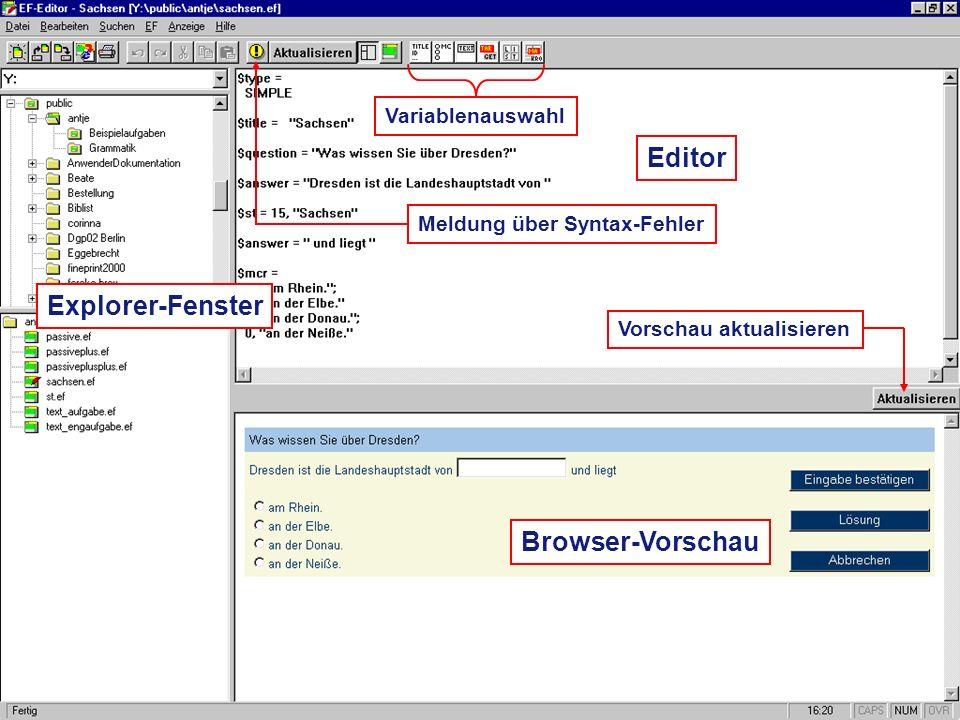 Editor Explorer-Fenster Browser-Vorschau Variablenauswahl