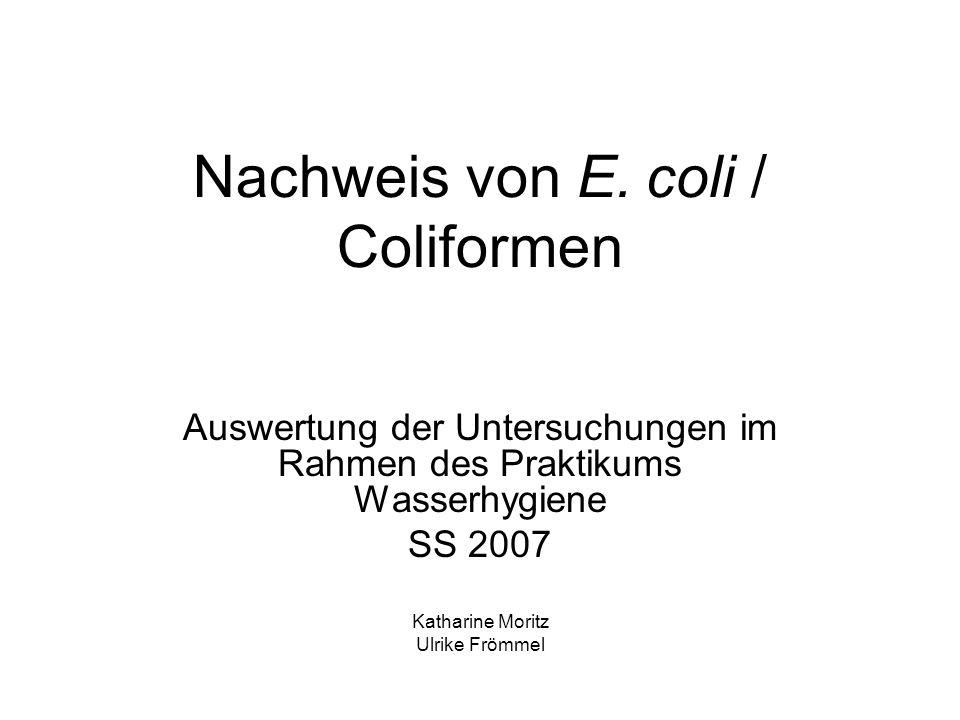 Nachweis von E. coli / Coliformen