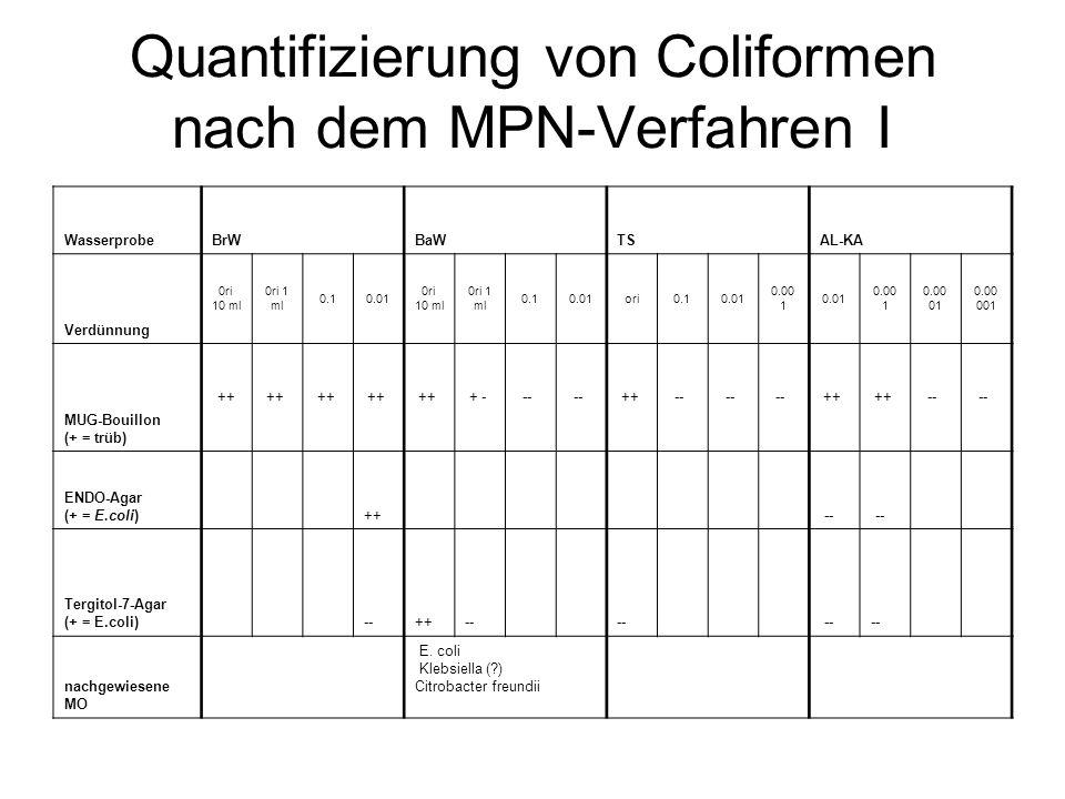 Quantifizierung von Coliformen nach dem MPN-Verfahren I
