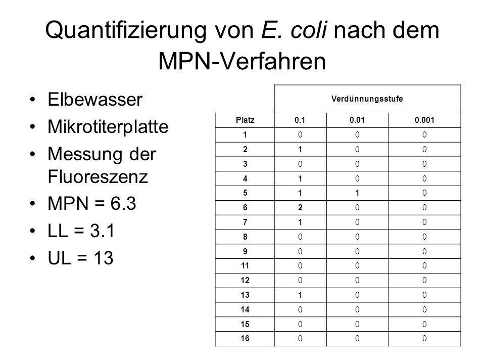 Quantifizierung von E. coli nach dem MPN-Verfahren