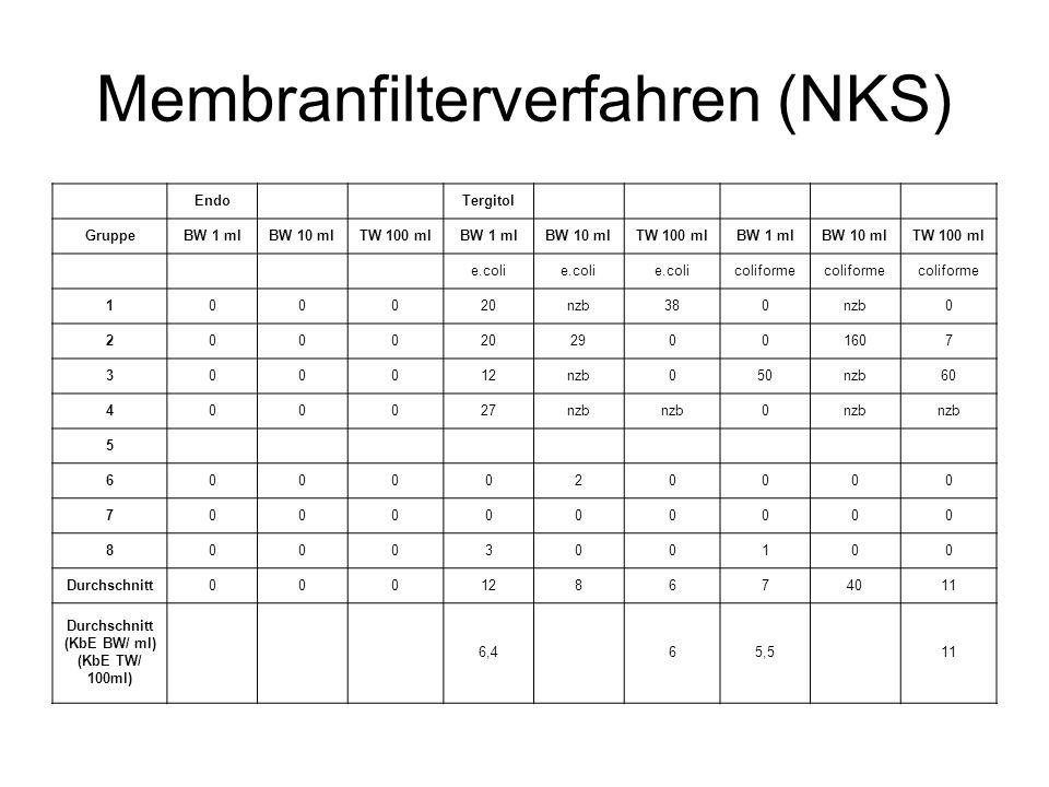Membranfilterverfahren (NKS)