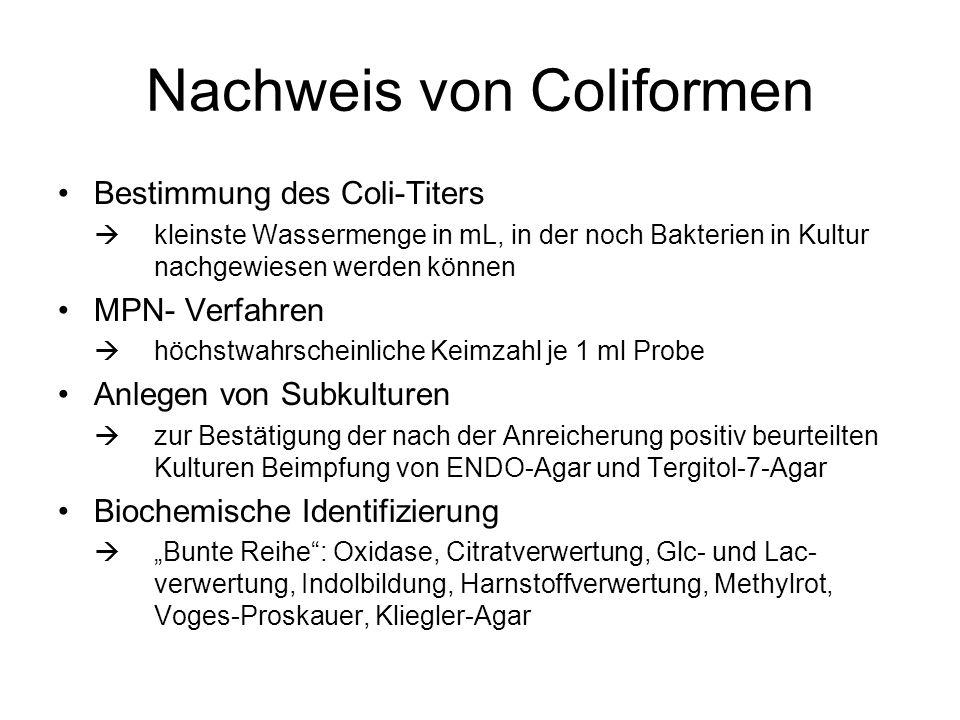 Nachweis von Coliformen