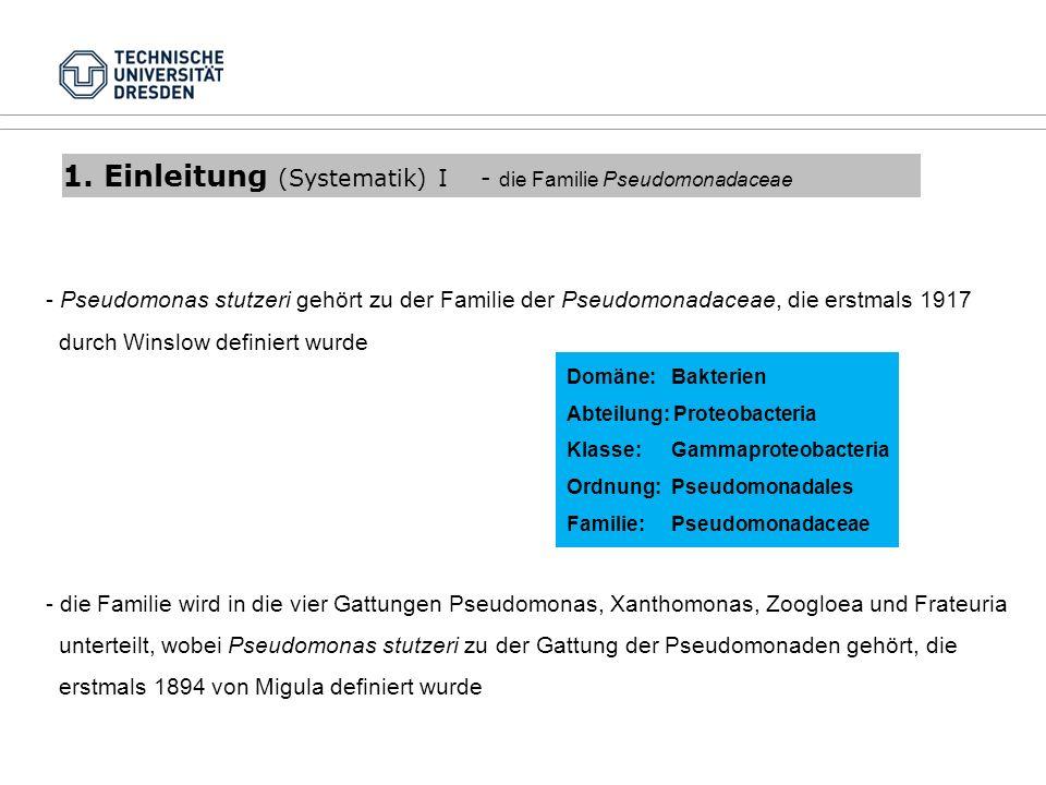 1. Einleitung (Systematik) I - die Familie Pseudomonadaceae