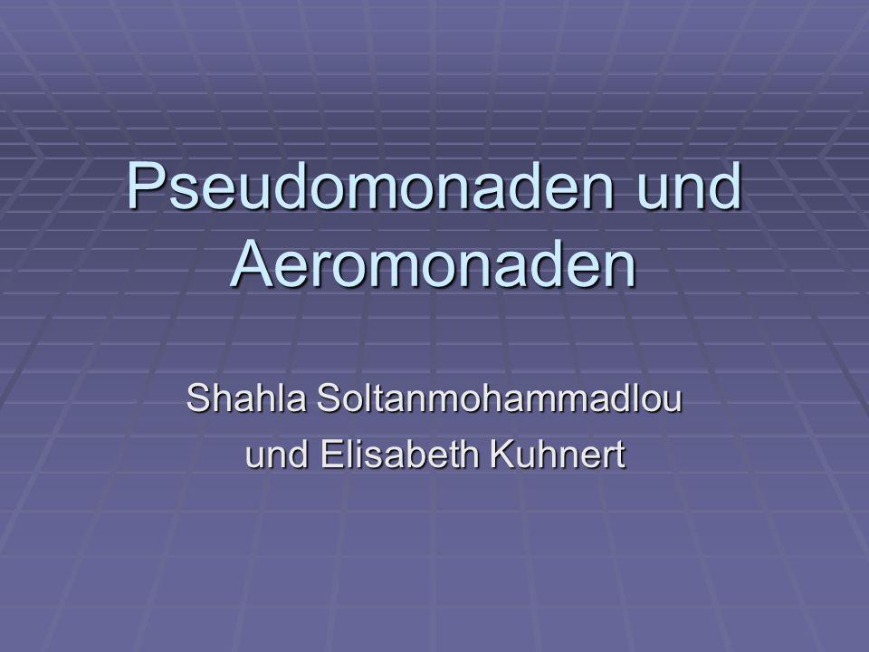 Pseudomonaden und Aeromonaden