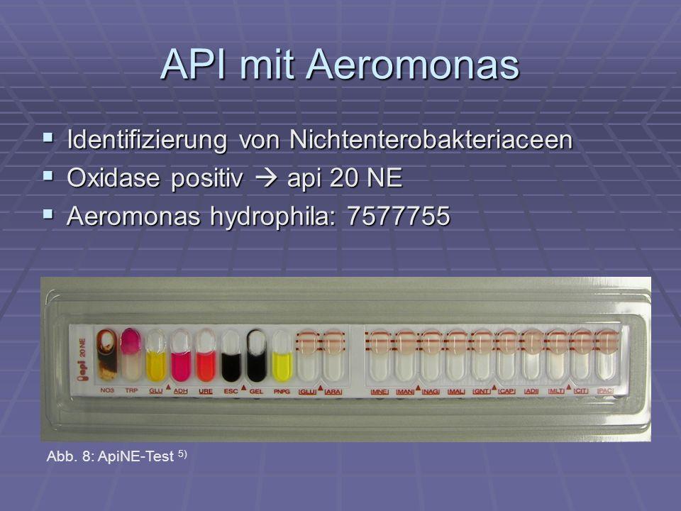 API mit Aeromonas Identifizierung von Nichtenterobakteriaceen