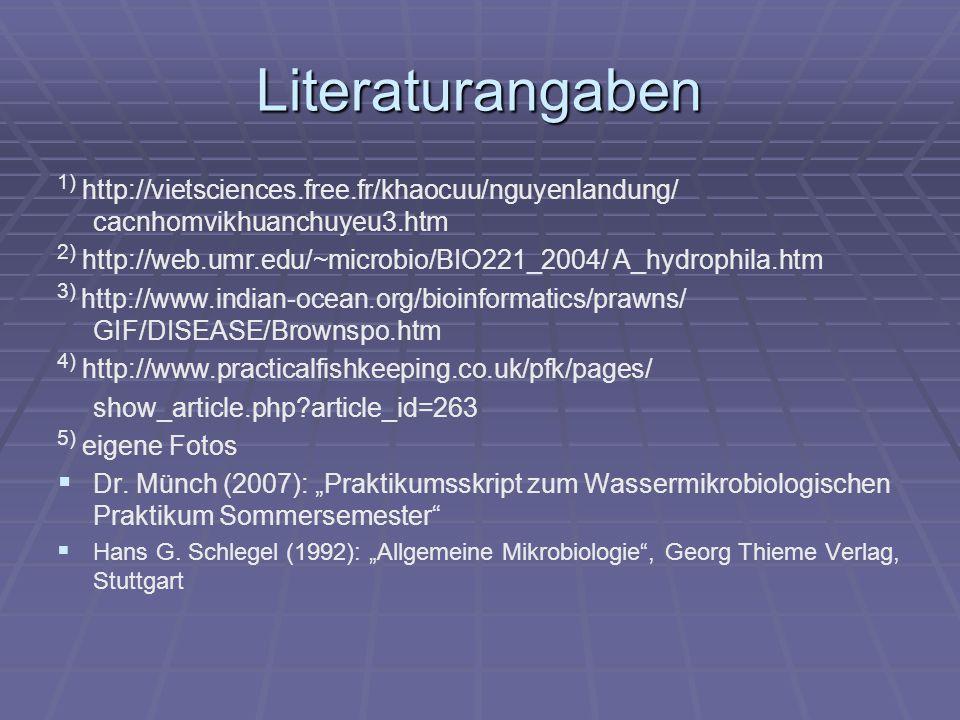 Literaturangaben 1) http://vietsciences.free.fr/khaocuu/nguyenlandung/ cacnhomvikhuanchuyeu3.htm.