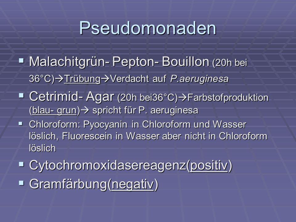 Pseudomonaden Malachitgrün- Pepton- Bouillon (20h bei 36°C)TrübungVerdacht auf P.aeruginesa.