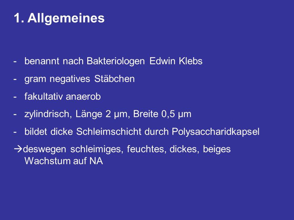 1. Allgemeines benannt nach Bakteriologen Edwin Klebs