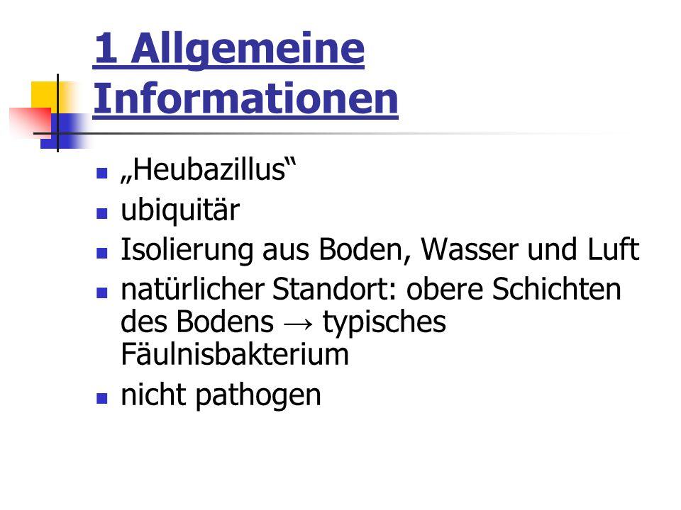 1 Allgemeine Informationen