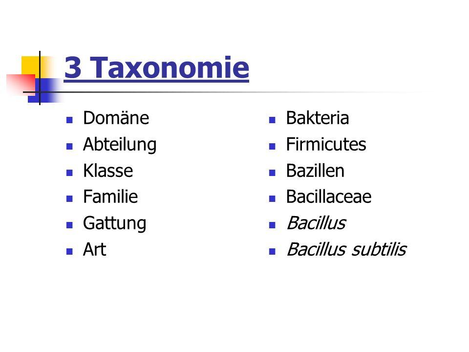 3 Taxonomie Domäne Abteilung Klasse Familie Gattung Art Bakteria
