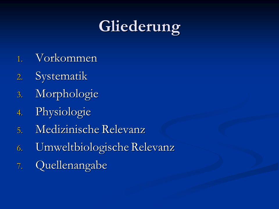 Gliederung Vorkommen Systematik Morphologie Physiologie