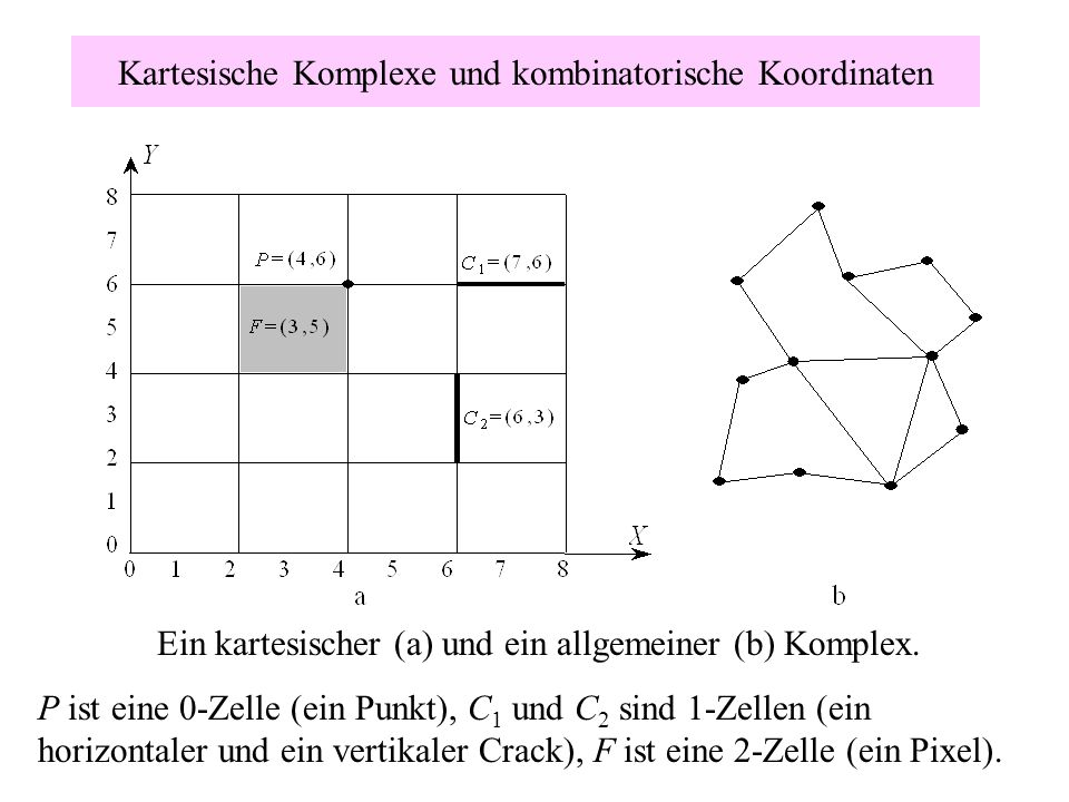 Kartesische Komplexe und kombinatorische Koordinaten