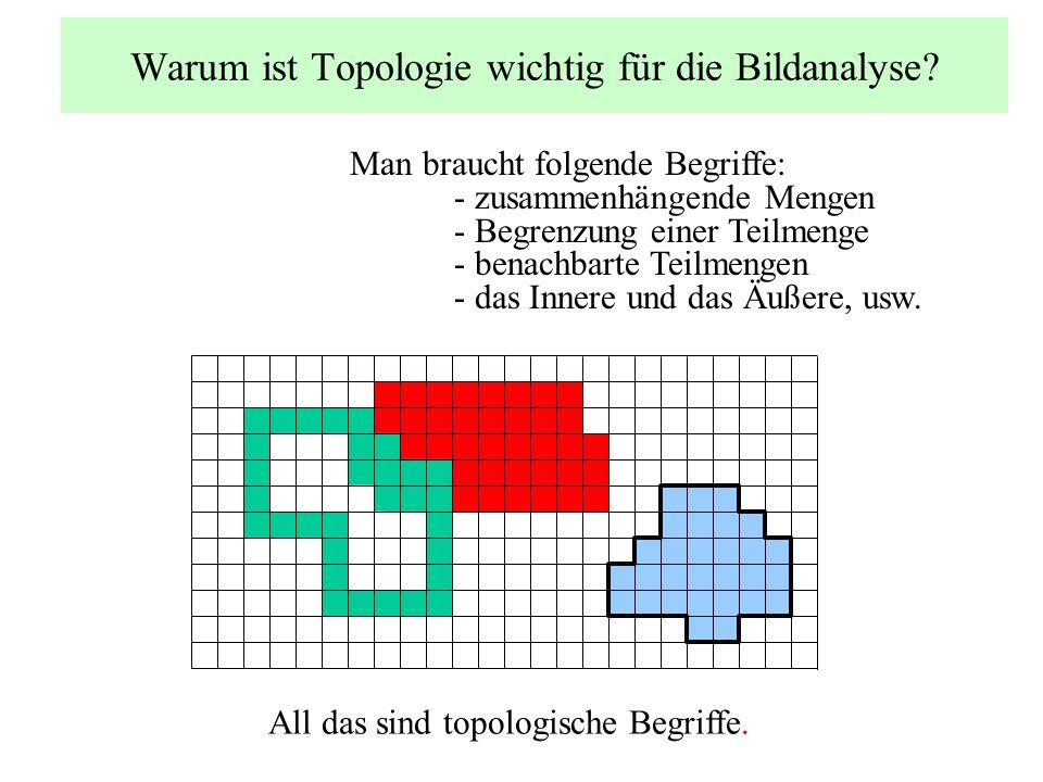 Warum ist Topologie wichtig für die Bildanalyse