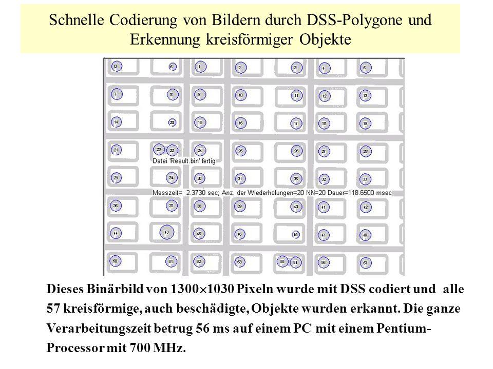 Schnelle Codierung von Bildern durch DSS-Polygone und Erkennung kreisförmiger Objekte