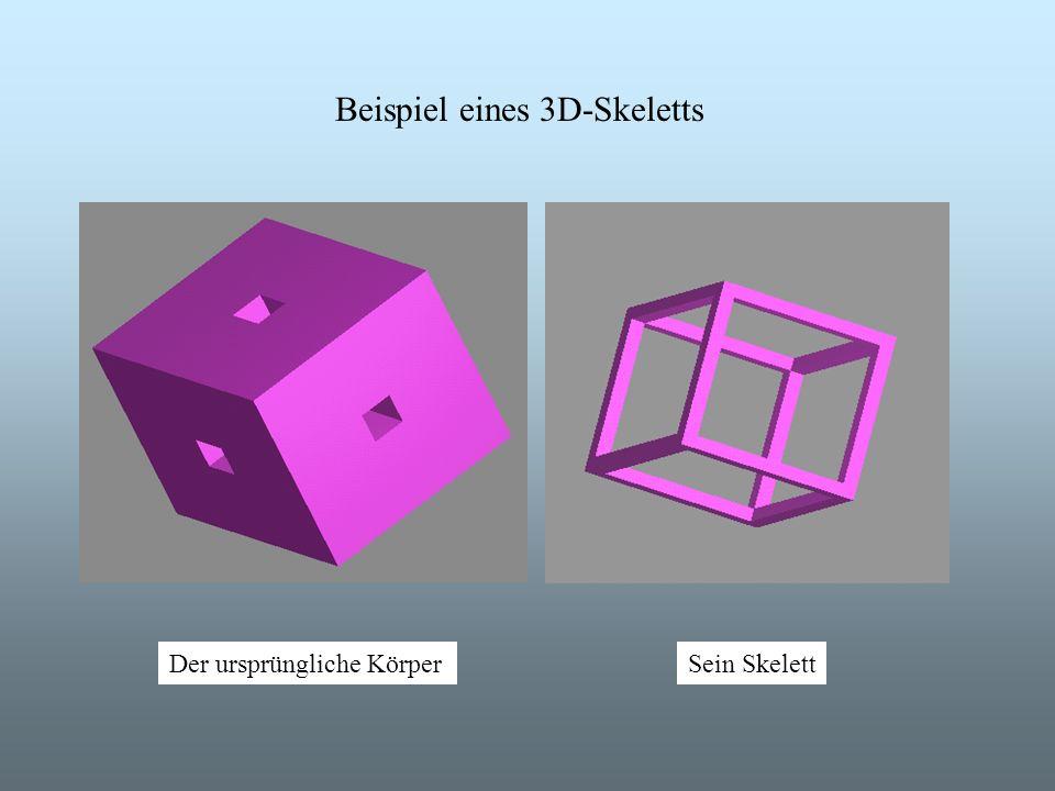 Beispiel eines 3D-Skeletts