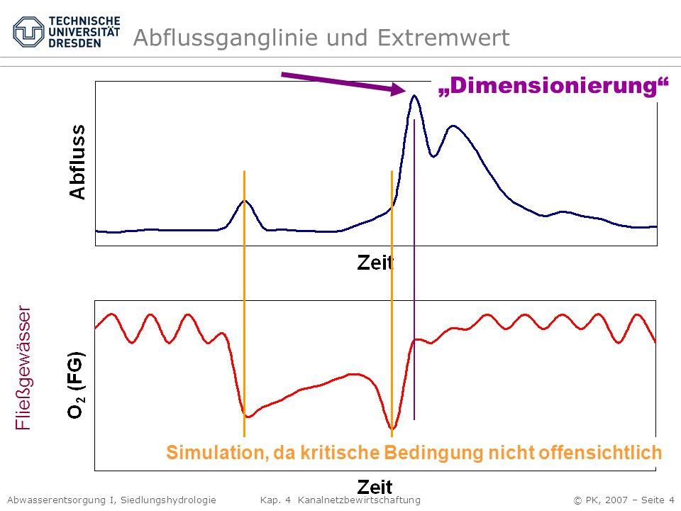 Abflussganglinie und Extremwert