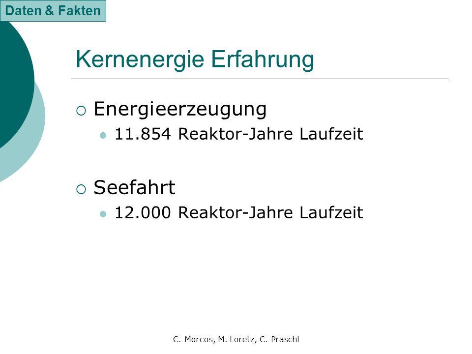 Kernenergie Erfahrung