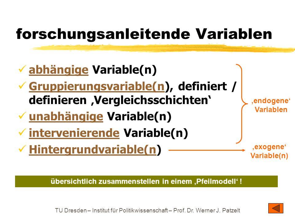 forschungsanleitende Variablen